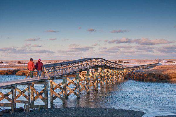 MA-CAPE COD-SANDWICH-BOARDWALK BEACH