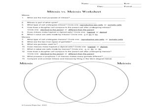 Mitosis vs. Meiosis Worksheet Worksheet Hot Resources