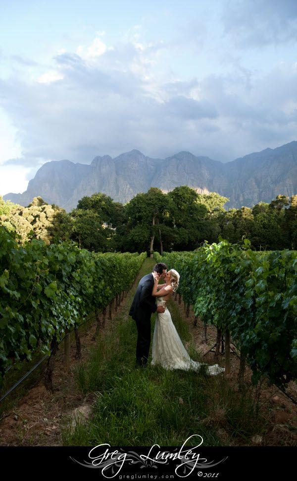 Incredible Moelenvliet Wine Estate Wedding Images by Greg Lumley
