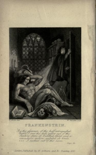 A summary of major literary themes Mary Shelley highlighted in Frankenstein