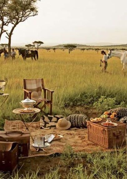 Serengeti National Park - Tanzania, Africa