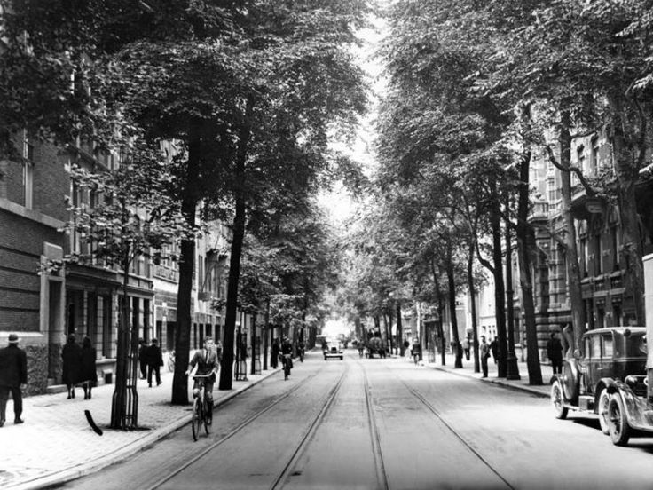 De Witte de Withstraat omstreeks 1931. Witte Corneliszoon de With (1599-1658) was vlootvoogd en vice-admiraal van Holland en West-Friesland. De vlakbij Den Briel geboren De With sneuvelde tijdens de zeeslag in de Sont en werd begraven in de Sint Laurenskerk te Rotterdam, waar een marmeren grafmonument voor hem werd opgericht. De Witte de Withbrug ligt over de Westersingel en vormt de verbinding van de Witte de Withstraat met het Museumpark.