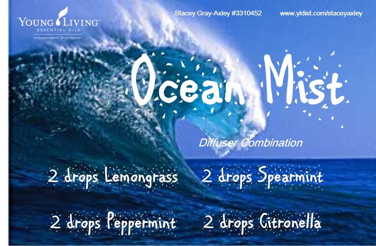 Ocean Mist Diffuser Combo with Lemongrass, Peppermint, Spearmint and Citronella Essential Oils
