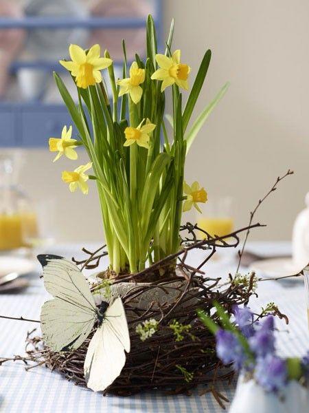 Narzissen im Nest: Ein toller DIY-Tipp für den Tisch!