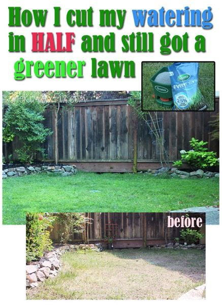 How I cut back my lawn watering by 60% during the California drought and was actually able to wind up with a greener, lusher lawn.  I didn't have to give up grass in order to conserve water!