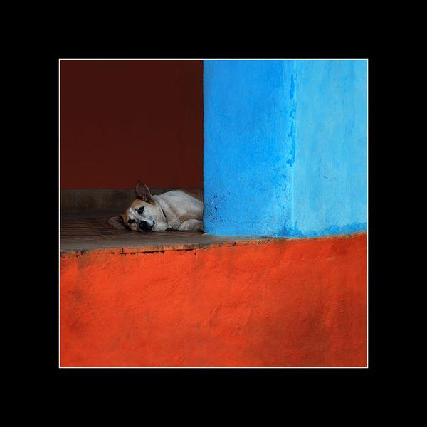 Zdjęcie w ramie 50 x 50 Indie - Jacek_Falmur_Photography - Fotografia kolorowa