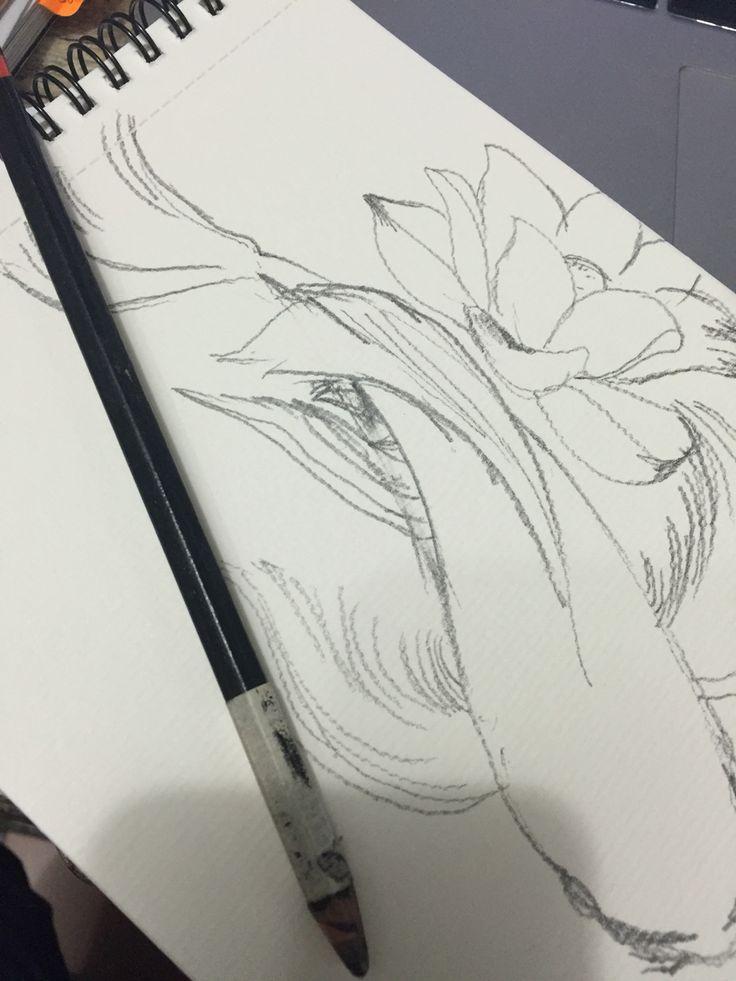 Working progress sketch.