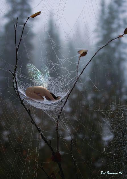 Little fairy....