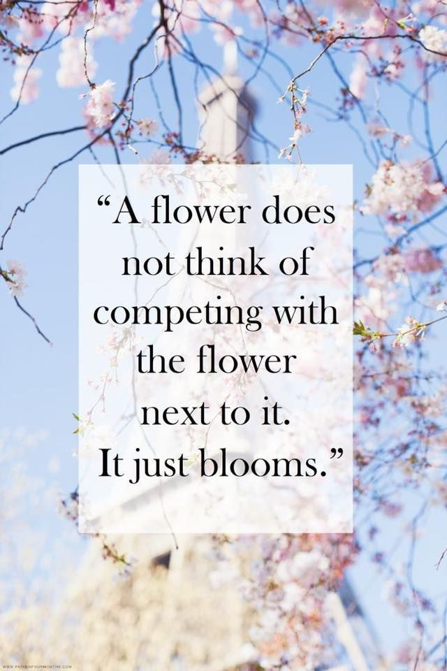 """""""A flower does not think of competing with the flower next to it. It just blooms."""" Why must we be so competitive? Looking all around yourself and comparing... it steals precious energy from you."""