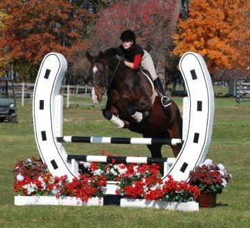 Jumps West - Horse Jumps, Dressage, Barn Equipment