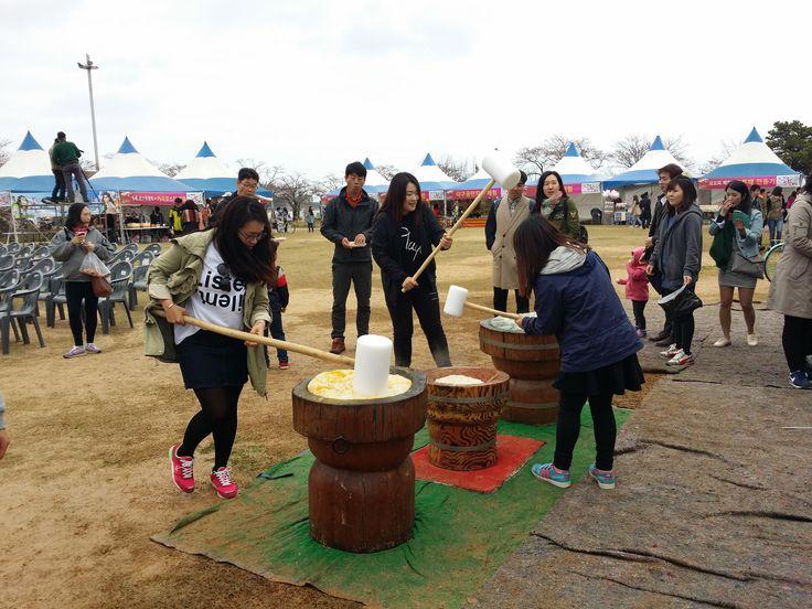 2015년 강릉 경포벚꽃잔치 떡메치기 체험