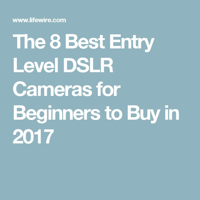 The 8 Best Entry Level DSLR Cameras for Beginners to Buy in 2017