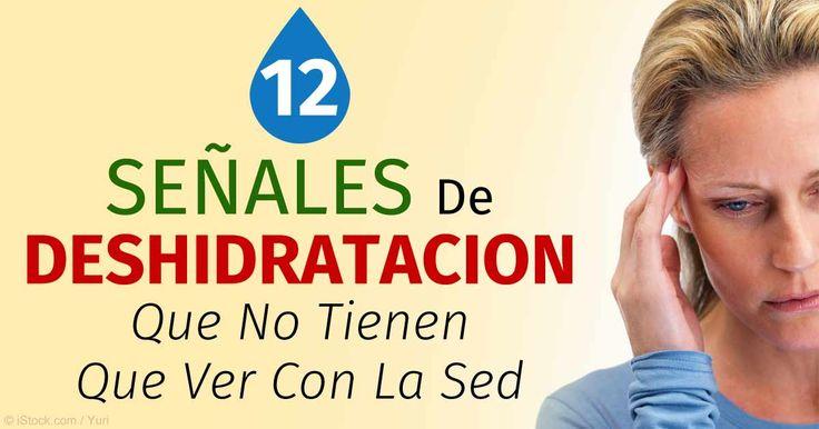 Un estudio muestra que más de la mitad de los niños están deshidratados y que los conductores deshidratados cometen más errores que…