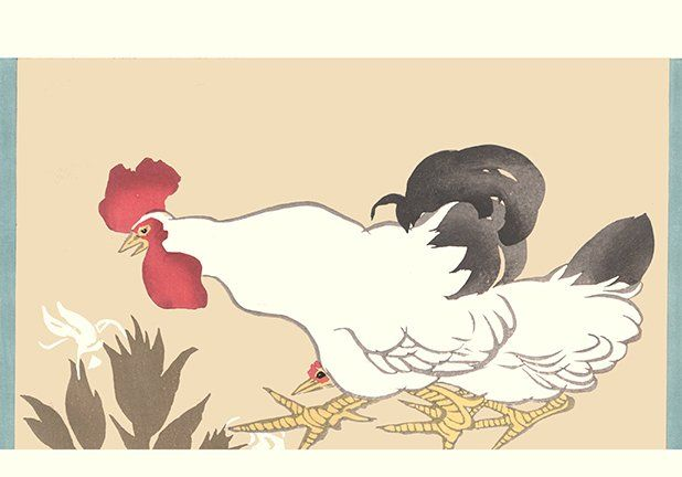 Artist: Issui Ogino. Keywords: flower floral bird kacho rinpa rimpa korin ogata world painting style print printed woodblock woodcut hanga picture book album ehon gafu art artist japan japanese orient oriental asia asian readercollection.com orchid domestic fowl chicken