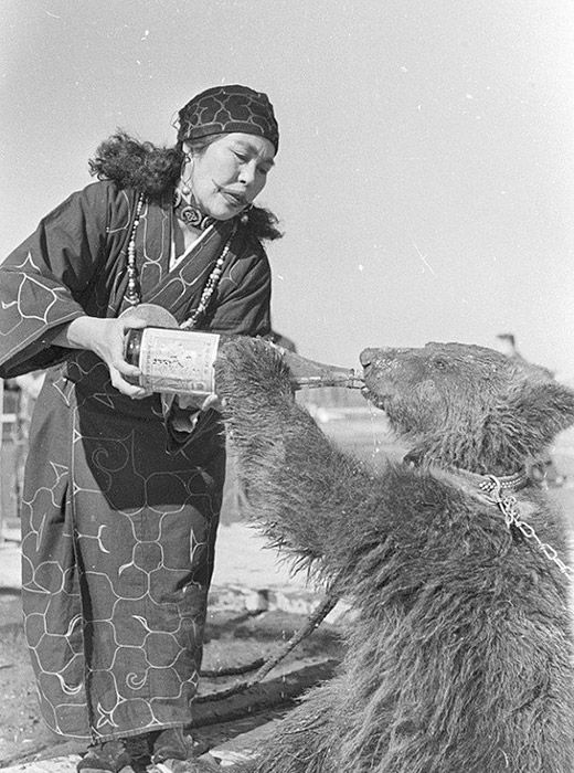 The traditional religion of the Ainu has also virtually disappeared — only the ceremonial worship of bears remains, and that's largely a tourist attraction.