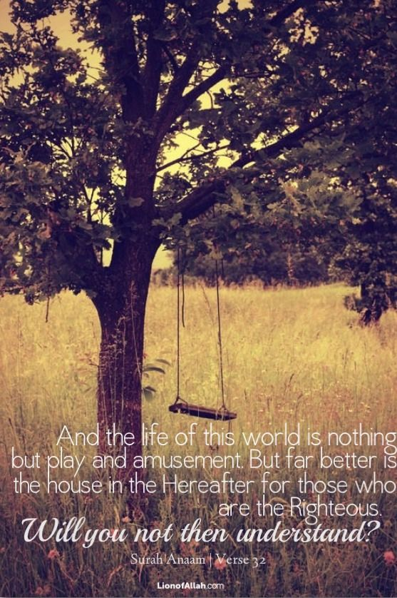 And the life of this world is nothing but play and amusement. But far better the house in the Hereafter for those who are the Righteous. Will you not then understand? (Quran 6:32) #Islam #Hereafter #Dunya #world