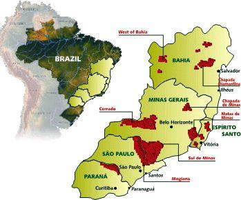 Brazil's Coffee Regions - Brasilbar