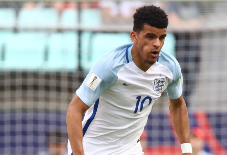 """Coaches speak out on Dominic Solanke's potential: """"He reminds me of Teddy Sheringham, but quicker"""""""
