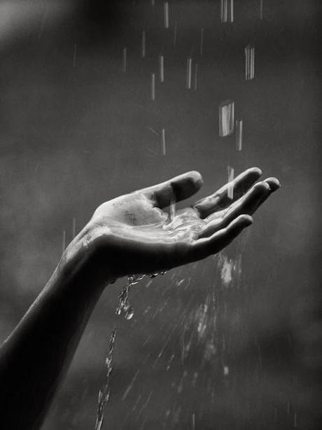 DesertRose/// sweet rain