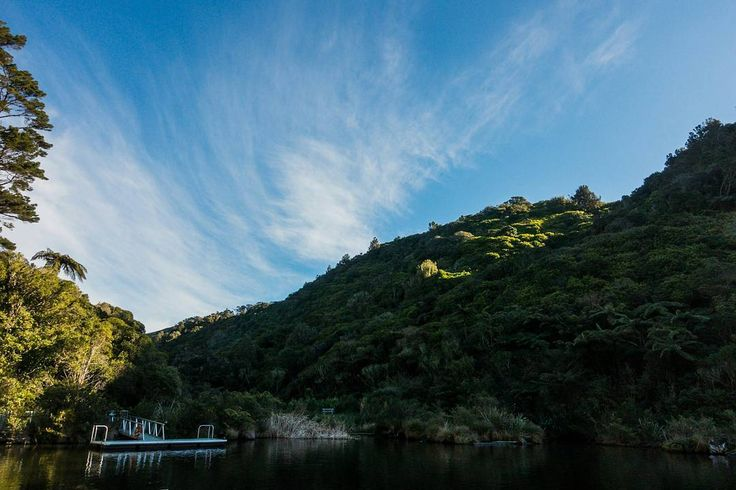 Zealandia Ecosanctuary from a few weeks back... 📷 . . . . . #Wellington…