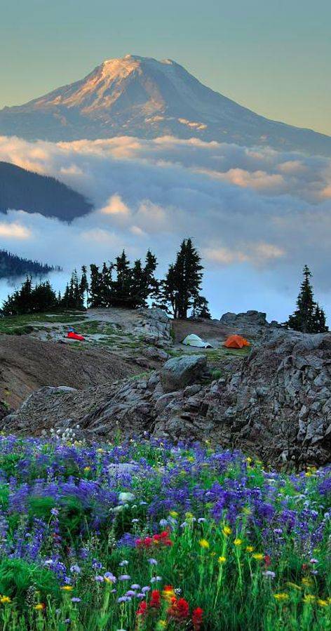 Mt. Adams between Yakima and Vancouver, Washington • photo: Robert Crum on Fotolia