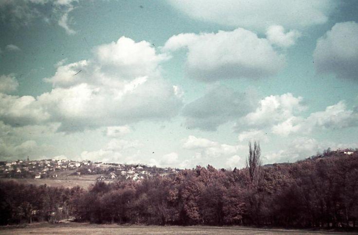 Hűvösvölgyi Nagyrét - 1940 - Fortepan
