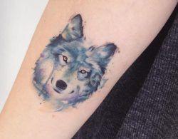 Kleiner Wolfskopf Tattoo auf dem Arm