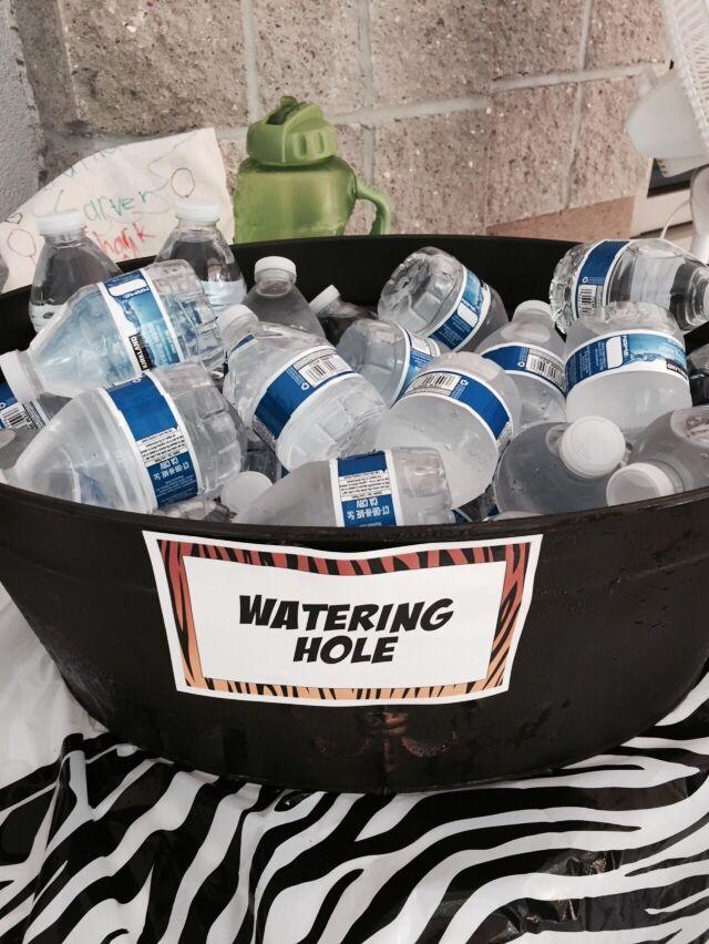 Watering hole #wildkratts