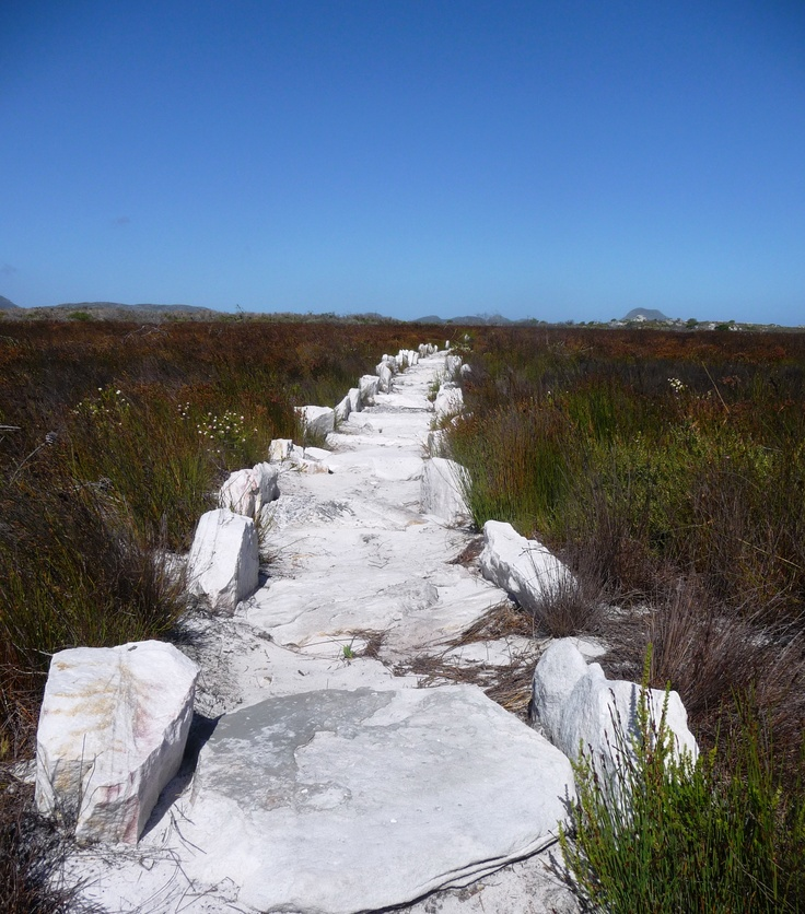 Cape Point National Park hiking trail, Cape Town, South Africa