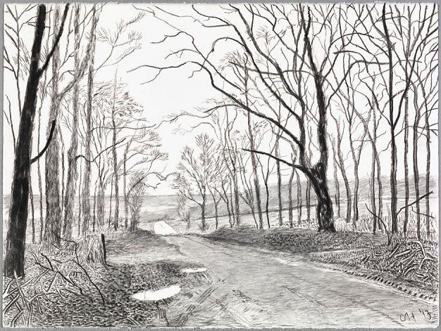 david hockney - woldgate, charcoal on paper, 2013.