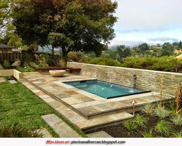 182 best images about pools on pinterest small yards for Disenos de piscinas rectangulares