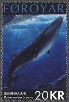 Représentation d'un rorqual boréal sur un timbre des îles Féroé émis le 17 septembre 2001.
