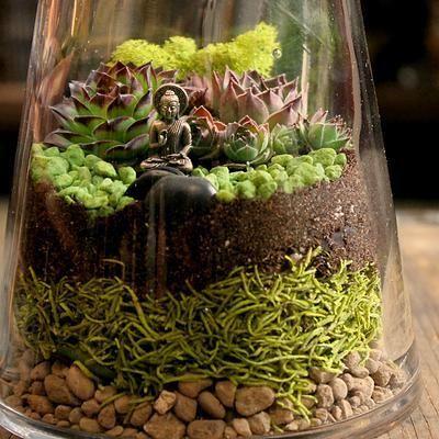 DIY Zen Terrarium.