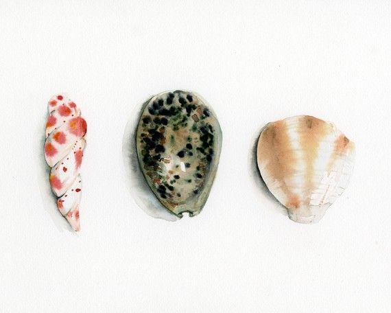 Seashells- Archival print of watercolor. nautical decor