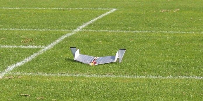 Daler consegue se adaptar tanto no terreno quanto no ar com os mesmos recursos do projeto (Foto: Divulgação/Ludovic Daler)