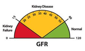 What is Chronic Kidney Disease (CKD)?