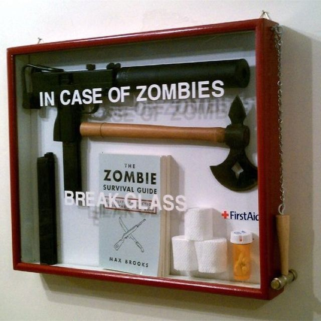 My zombie survival kit