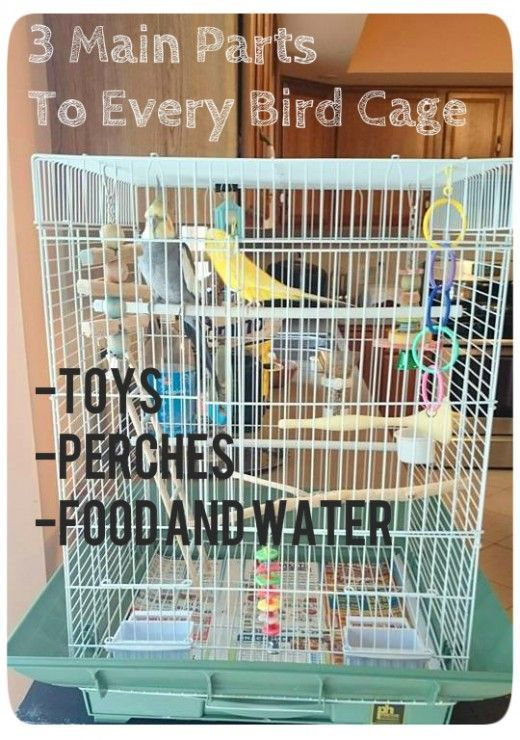 An effective cage setup for parakeets, cockatiels, and other small birds.