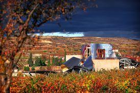 Marques de Riscal :: City of Wine, Spain