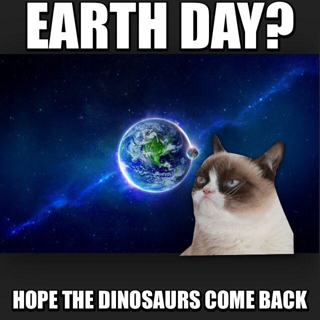 grumpy earth day i grumpy cat pinterest