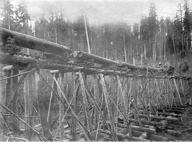 Locomotive pushing railroad cars with logs over wood trestle c1900