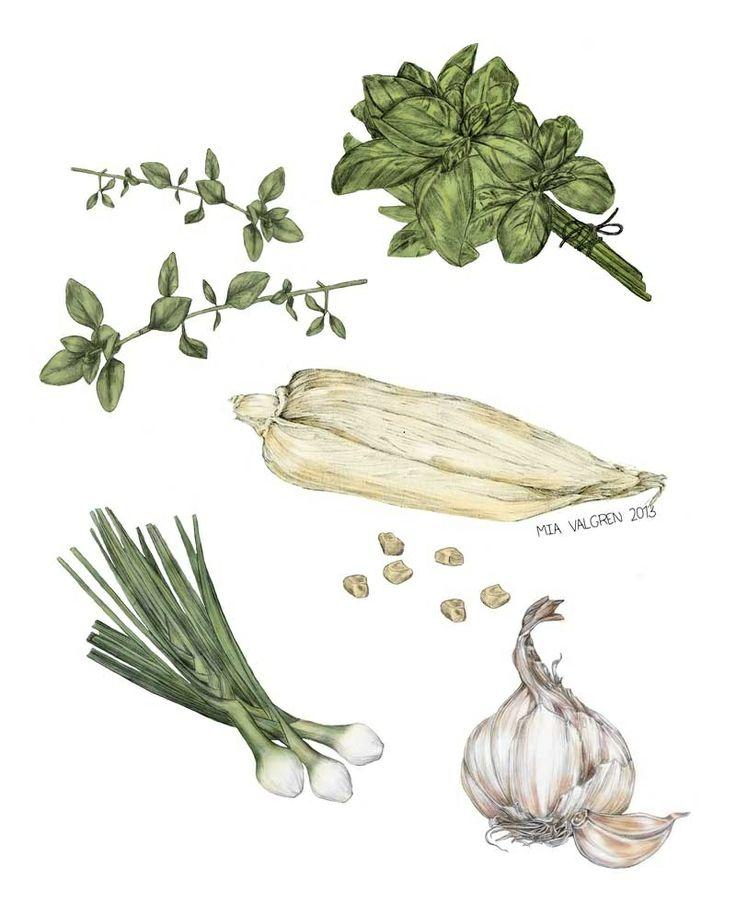 Vegetables in color