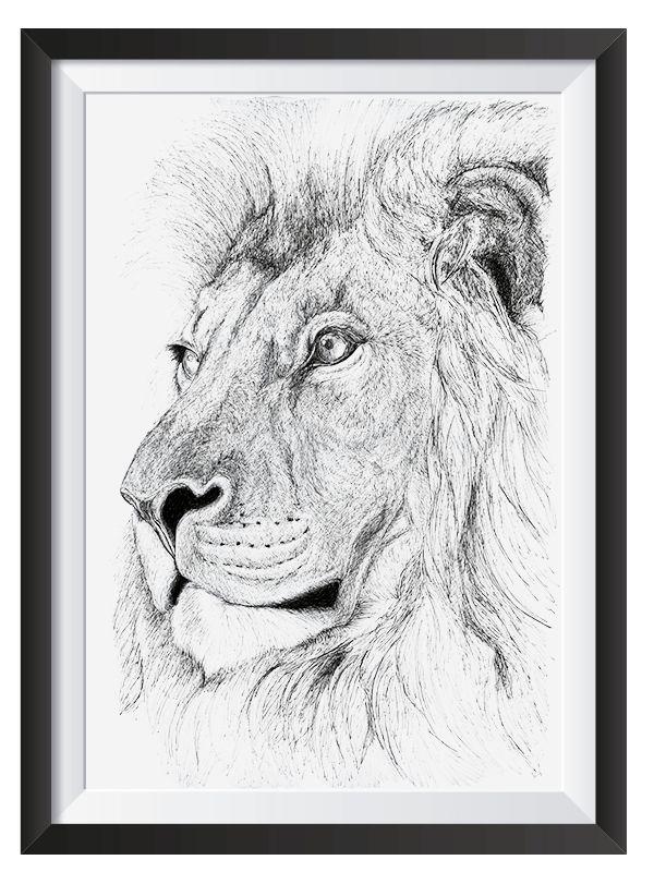 Lion illsutrated in with Pen by Nicoll van der Nest