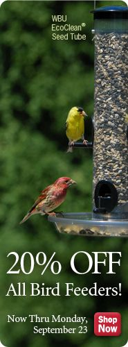 Wild Birds Unlimited   WBU   Wild Bird Store