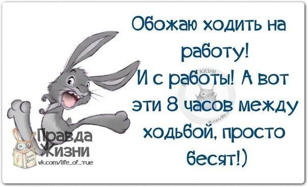 https://pp.vk.me/c540106/v540106334/1c45f/O1GAUQPBAOU.jpg