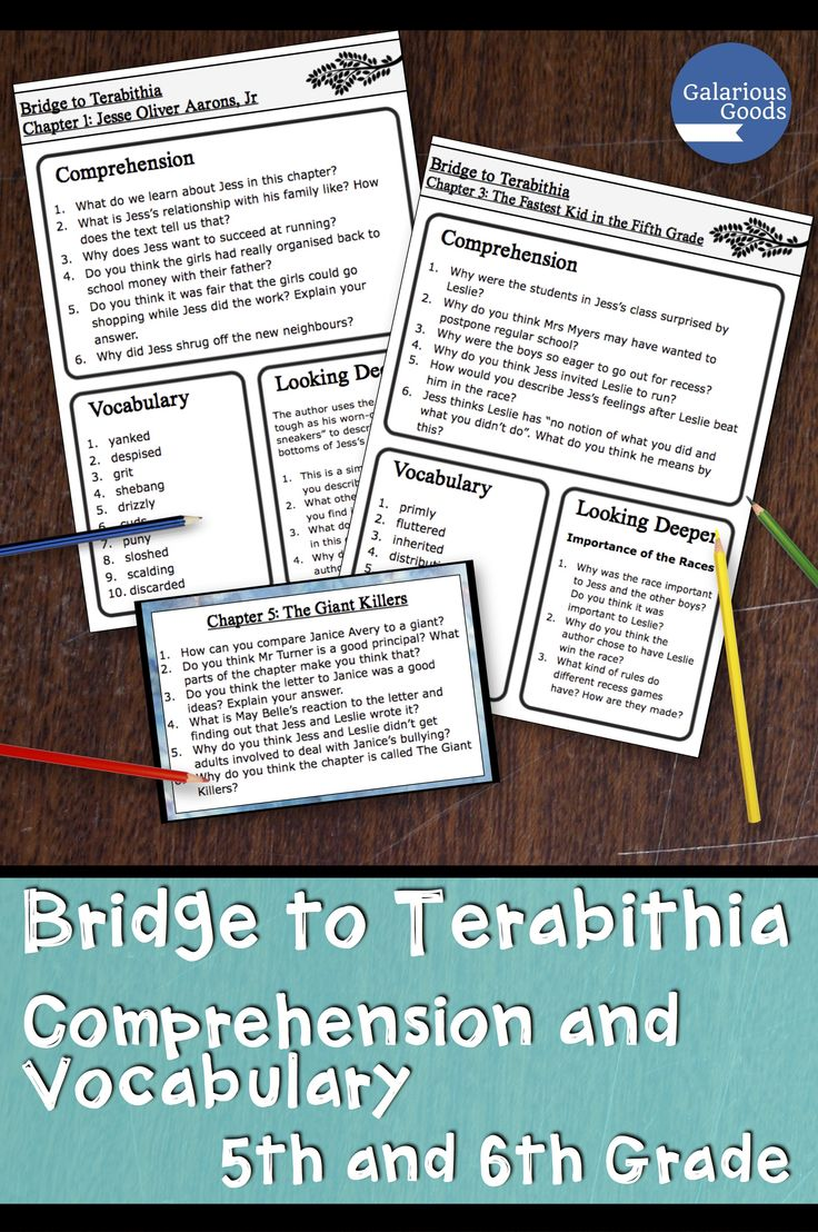 Use this novel study resource to explore the classic novel Bridge to Terabithia by Katherine Paterson with your 5th Grade and 6th Grade students. Extensive comprehension and vocabulary resources are provided in different formats to allow for flexibility in the classroom. Perfect for teachers to take an in-depth look #galariousgoods