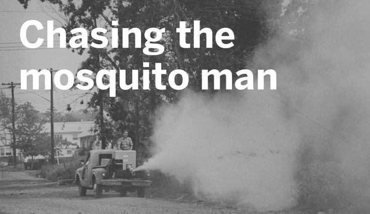 Kids now a days with their Tide Pods back in my day we had to wait for the Mosquito Man #funny #meme #LOL #humor #funnypics #dank #hilarious #like #tumblr #memesdaily #happy #funnymemes #smile #bushdid911 #haha #memes #lmao #photooftheday #fun #cringe #meme #laugh #cute #dankmemes #follow #lol #lmfao #love #autism #filthyfrank #trump #anime #comedy #edgy