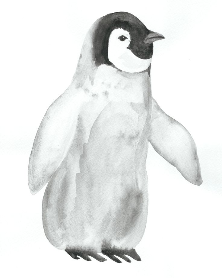 Baby Penguin , watercolor, 9 x 12 in, 2015