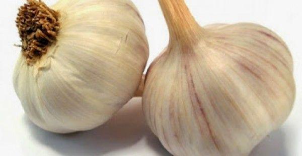 Δείτε τι συμβαίνει όταν τρως σκόρδο με άδειο στομάχι και τι θεραπεύει