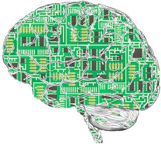 neuroedukacja